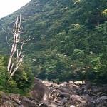 大きな岩の河原
