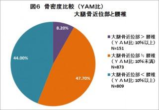 図6 骨密度比較(YAM比) 大腿骨近位部と腰椎無題